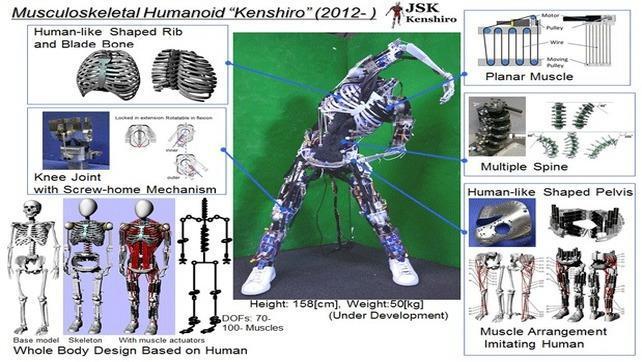 Robot Kenshiro ma kości i mięśnie ale głowy zabrakło