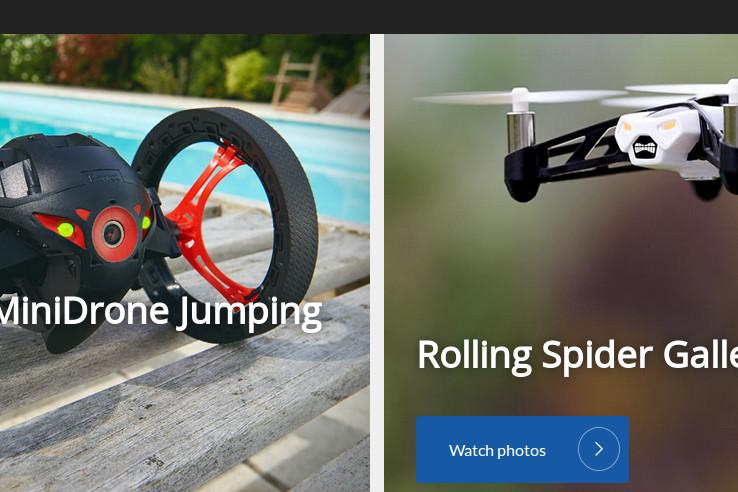 Toczący pająk i skaczący sumo