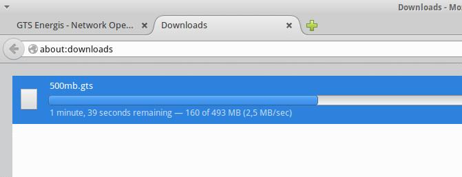 mozilla_download_gts